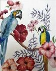 &#039;Two Parrots but no Two Can&#039;<br />by Valerie Trevan